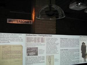 Holocaust-Ausstellung im Theater Nestroyhof Hamakom